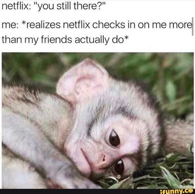 Picture memes SvZr1HG57 — iFunny