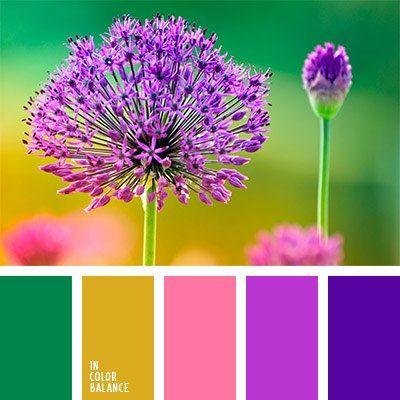 Цвета краски террако