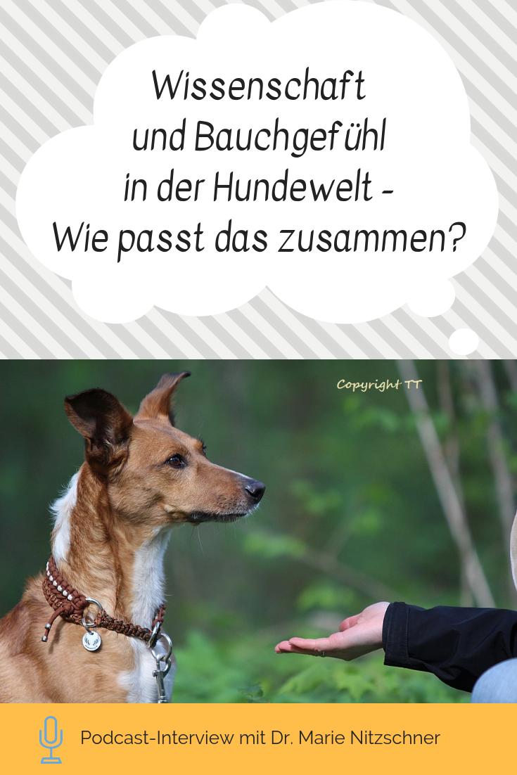 Tl 15 Wissenschaft Und Bauchgefuhl In Der Hundewelt Mit Dr Marie Nitzschner Hunde Wissenschaft Und Bauchgefuhl