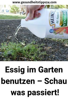Essig Im Garten Benutzen Schau Was Passiert Garten Bepflanzen Gemuse Beet Anlegen