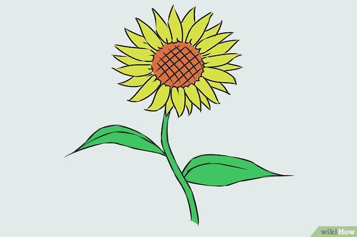 24 Gambar Kartun Bunga Sepatu 9 Cara Untuk Menggambar Bunga Wikihow Download Pair Hibiscus 2 Lukisan Bunga Matahari Menggambar Bunga Matahari Gambar Bunga