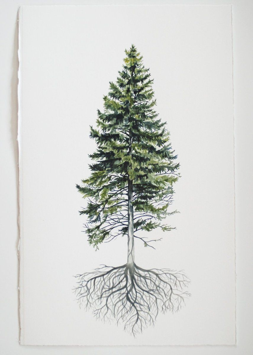 Place This Piece In A Frame And Hang It On Your Wall To Bring The Joy Of The Outdoors Into Your Home And With Pine Tree Tattoo Pine Tree Art