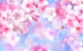 Image Result For Cute Wallpapers For Laptop Pintrest Cute