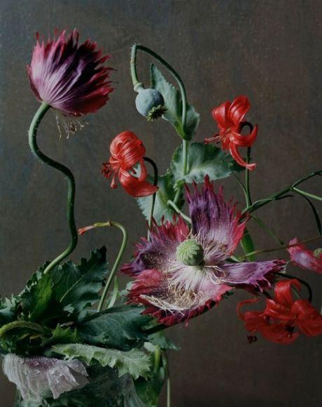 Sharon Core - Artists - Yancey Richardson