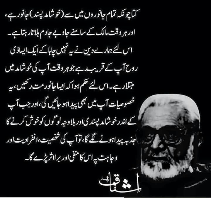Pin by mohammad ali entrepreneur on ashfaq ahmad banu for Bano qudsia quotes