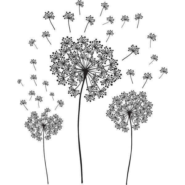Dandelion Small Wall Decals (70.880 COP) ❤ liked on Polyvore featuring home, home decor, wall art, fillers, flowers, backgrounds, art, deco, effects and doodle
