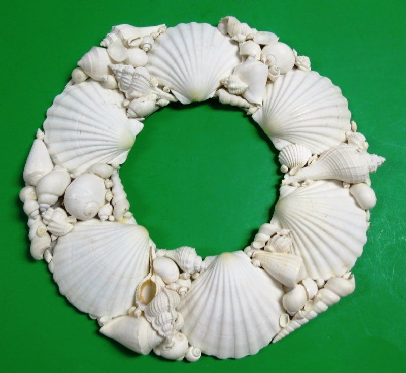 Don T Want To Make Your Own Shell Wreath Here Are Wholesale Real Shell Wreaths That Are Ready To Hang Seashell Wreath Seashell Wall Art Small Wreaths