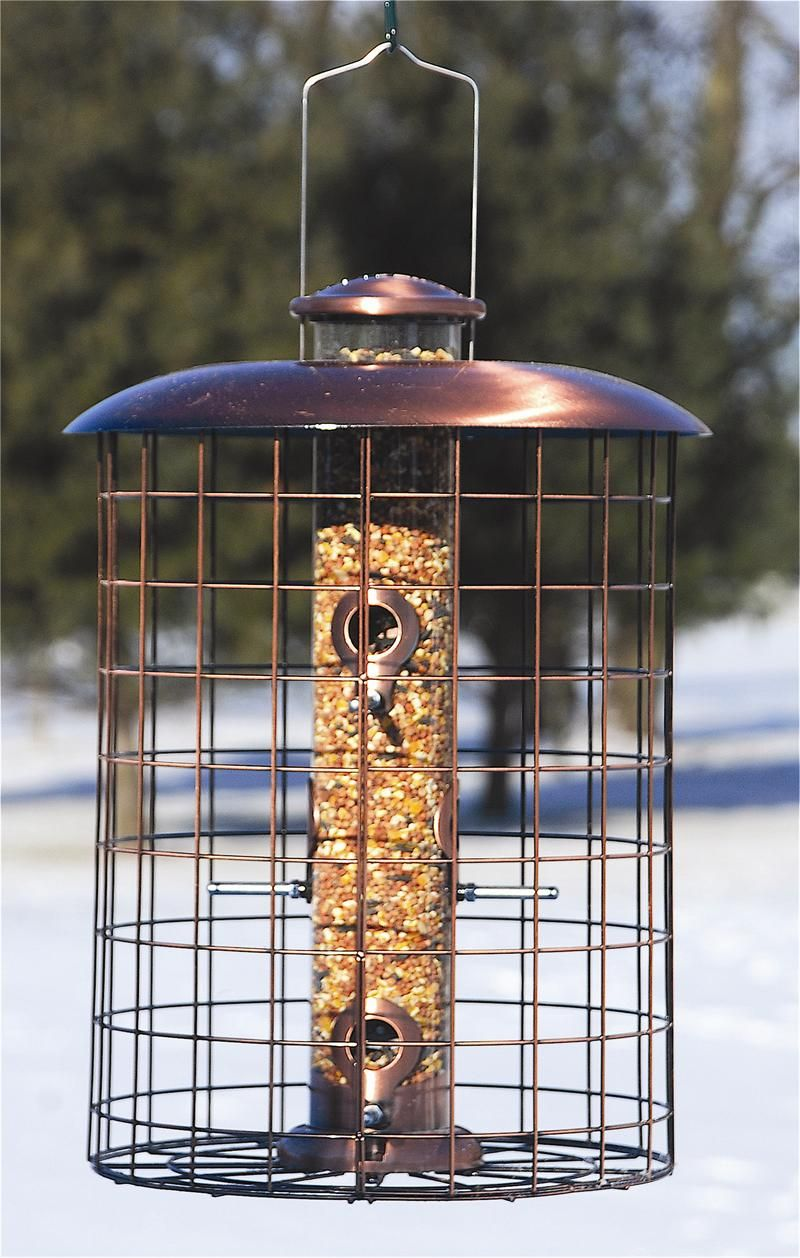 Brushed copper caged seed bird feeder woodlink bird