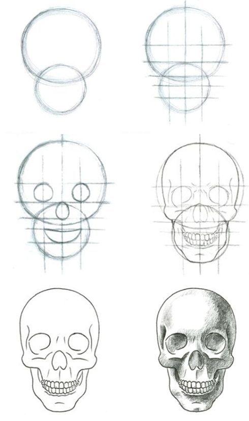 Como desenhar uma caveira decente ! | Art | Pinterest | Calaveras ...