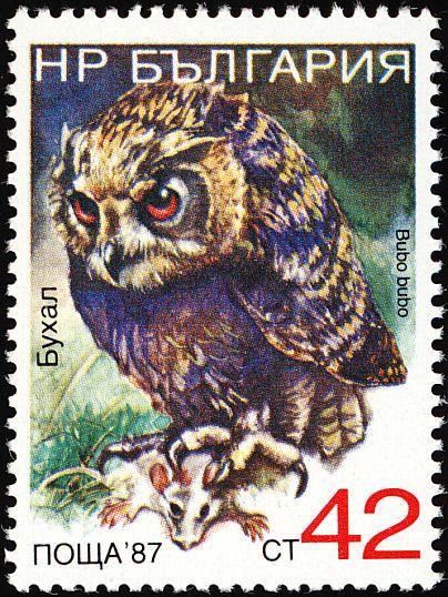 Znaczek: Eurasian Eagle-Owl (Bubo bubo) (Bułgaria) (Birds) Mi:BG 3694,Sn:BG 3328F,Yt:BG 3227,AFA:BG 3618