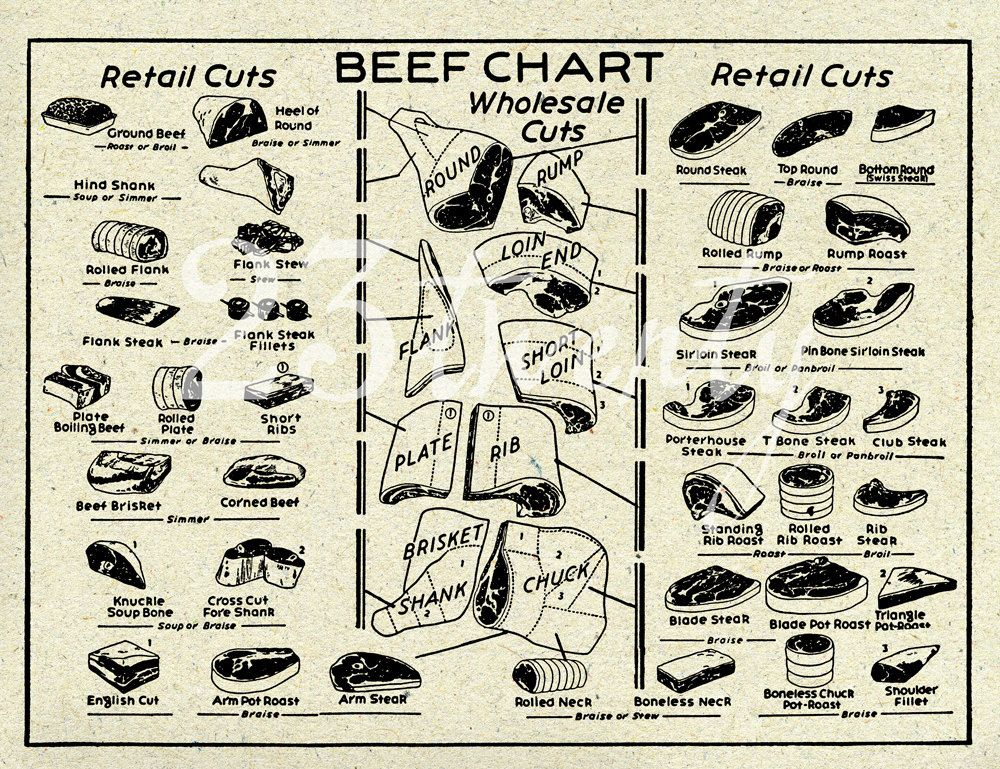 Vintage Beef Butcher Chart Meat Illustration 18x24 26