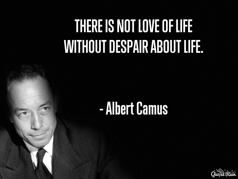 Albert Camus Quotes Mesmerizing Albert Camus Quotes  Quotesrain  Pinterest  Albert Camus Quotes