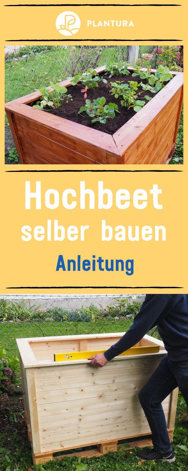 Anzeige Hochbeet Selber Bauen Ob Aus Paletten Holz Oder Mit