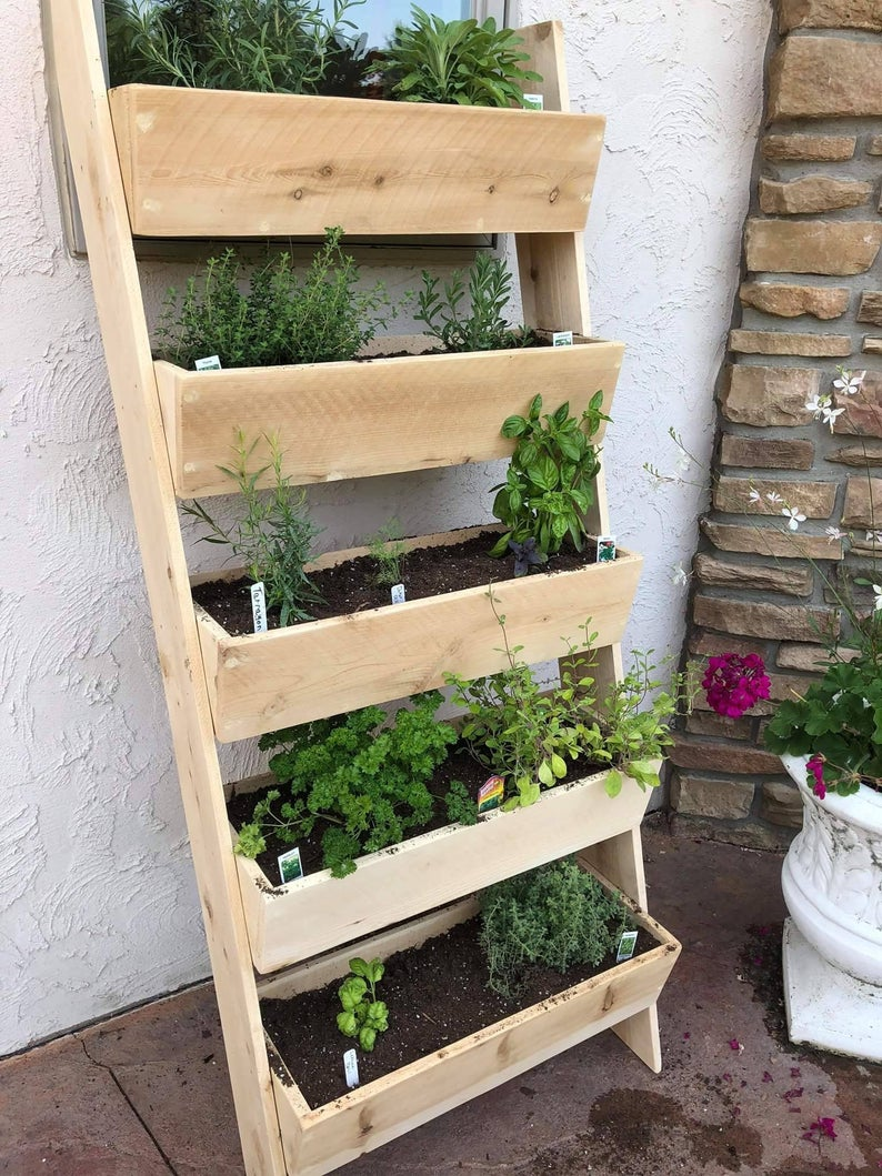 3, 4 or 5' Vertical Cedar Ladder Planter is part of Vertical garden diy, Vertical garden design, Pallets garden, Vertical garden indoor, Vertical vegetable garden, Vertical herb garden - Be the envy of the neighborhood or create a magical patio space with our 3, 4 or 5' Vertical Cedar Ladder Planter! This gorgeous show stopper can be used to create a wall of cascading flowers or an ideal growing space for strawberries, vegetables or herbs   Even without any foliage you will enjoy the crisp clean smell of the cedar which is naturally water and insect resistant  Folks, be sure to research the type of wood being used in the planter you purchase   You will not find a wood that will hold up better to the elements than cedar!  Additionally, please be aware that if you are purchasing  treated  woods, these are treated with a variety of toxic chemicals that are not suitable for growing food in and you will need to wash after touching these types of woods   Additionally, if you choose a  pallet wood  please also be aware that these are typically pine, a wood known for having the fastest decay rate and often treated with the carcinogen methyl bromide     We craft our planters with 100% untreated, all natural, cedar that has been the preferred choice for outdoor use for ages   Our gardeners also appreciate knowing that we complete each box with small drainage holes for ideal growing conditions   Is space limited   No problem! Simply leave us a message on your order and we'll be glad to attach hooks at the top so that this can be hung on the wall, leaving your floor space completely free This item ships in 23 boxes, one with the assembled planter boxes and one with the legs   All of the screw holes are predrilled for easy assembly with a basic screwdriver and no guess work   Screws are of course included as well This year we have added a 3 and 4' high option   These have 3 and 4 boxes respectively rather than 5   All 5' planters have 5 boxes