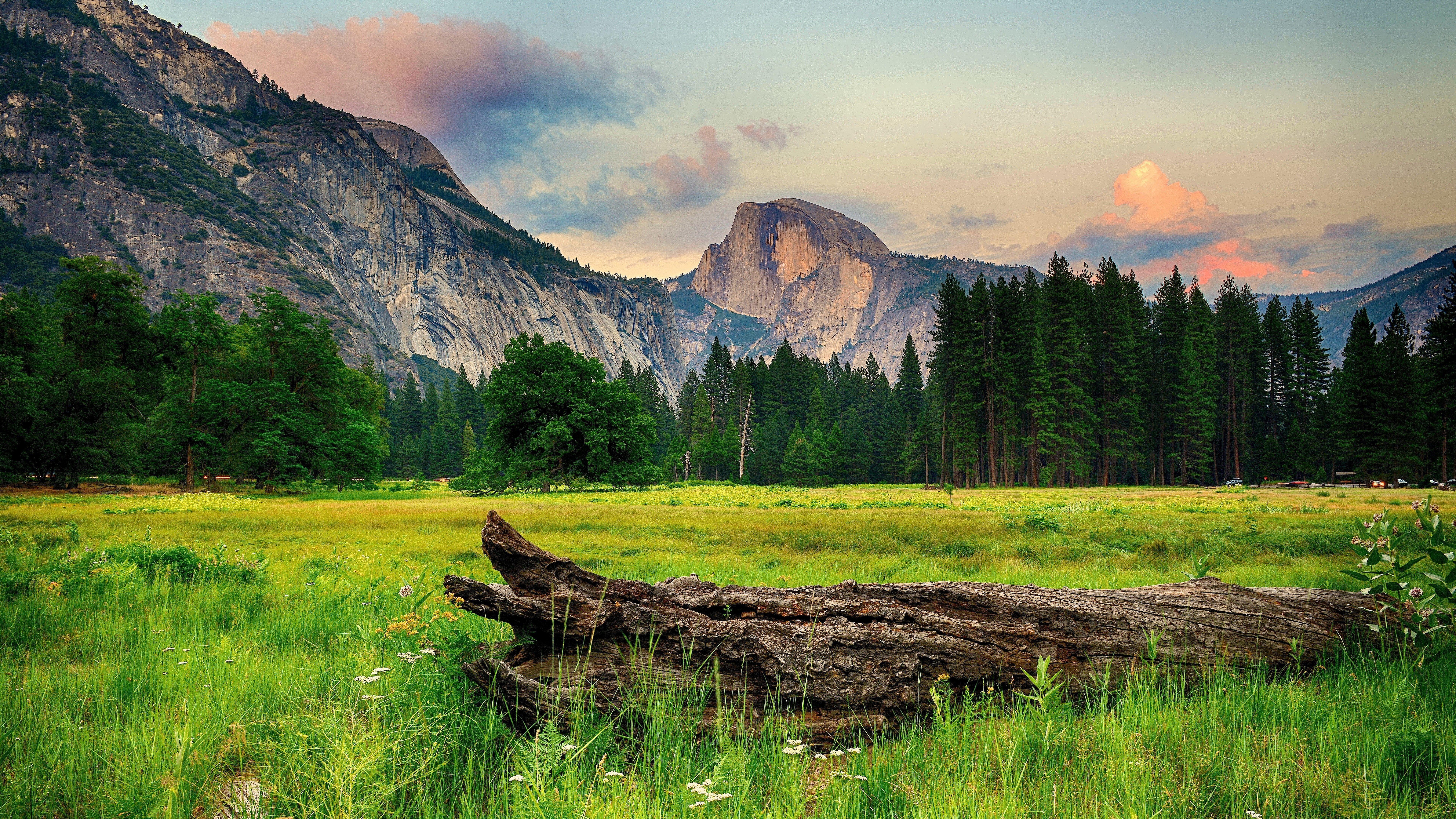 Ultra Hd 8k Resolution 7680x4320 Nature 8k Wallpaper Hdwallpaper Desktop Landscape Wallpaper Tree Landscape Wallpaper Yosemite Wallpaper