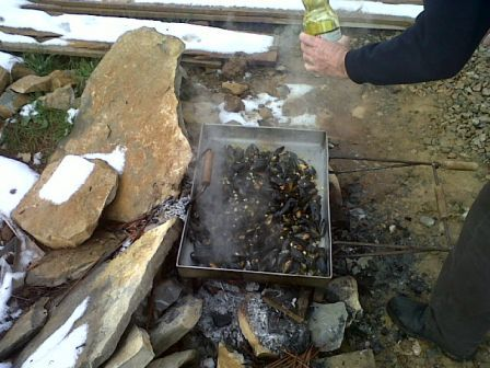 this is how I wish I could prepare mussels every time -- super fresh and over open fire