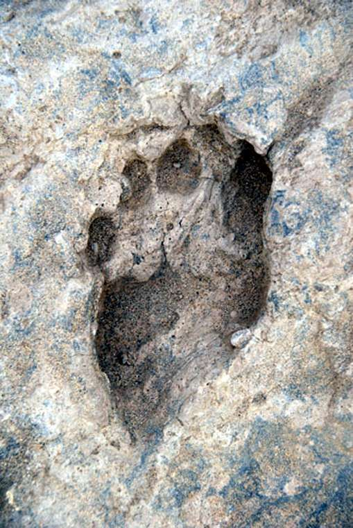The oldest footprint ever found, Kenya, one million five hundred thousand years old