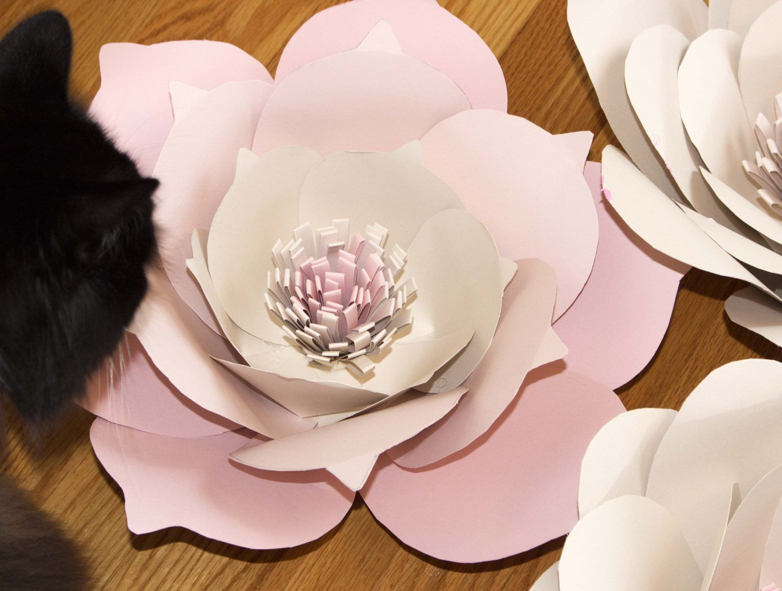 Giant paper flowers free template paper flower template