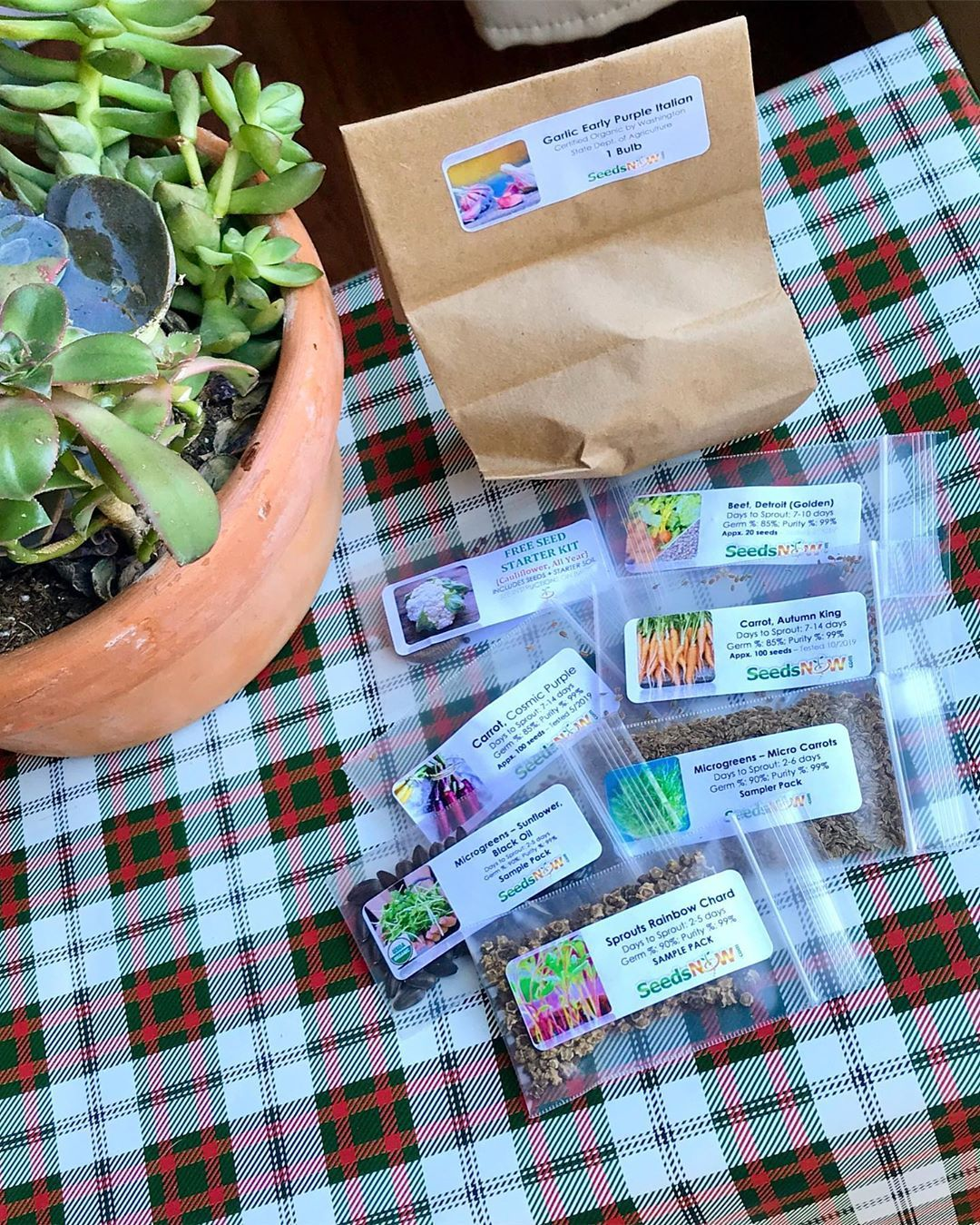 delivery 📬 These came in the mail yesterday! They're all new for me and I'm so excited 😊 Can't wait to try my hand at growing and 🌱. @seeds_now . . .