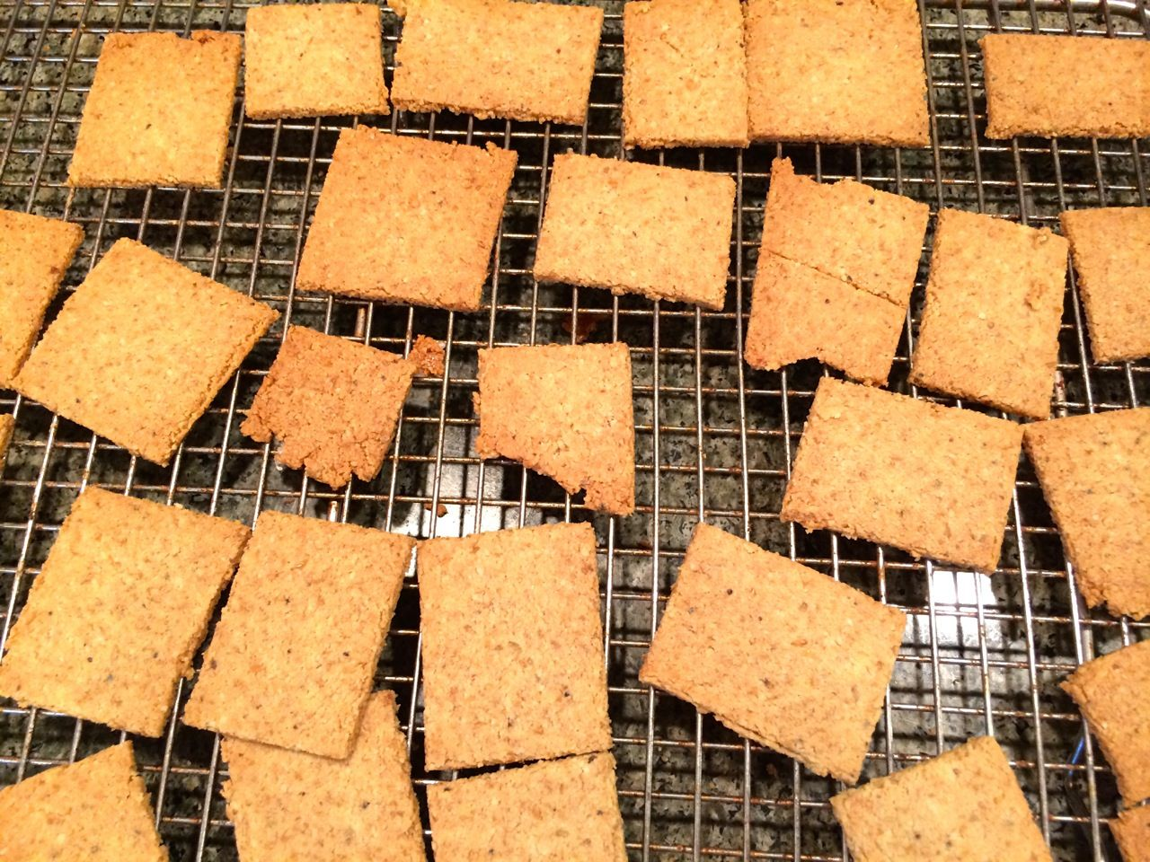 recipe: coconut and almond flour crackers [25]