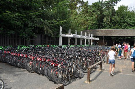 Bikes available to hire at Center Parcs Elveden Forest  Center