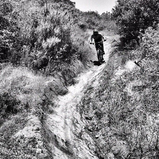 Sunday Laguna Beach downhill runs.