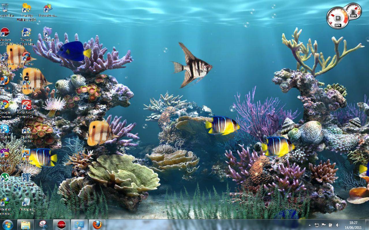 Wallpaper Animasi Bergerak Aquarium Hujan Salju Bbt Blog