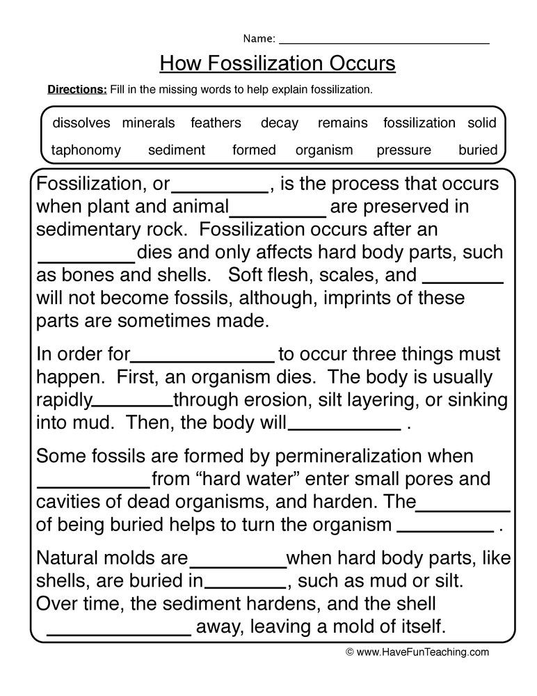 Fossils Fill In The Blank Worksheet Science Worksheets Elementary Earth Science Have Fun Teaching Fossil worksheets 4th grade