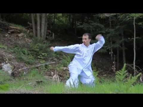 Choy Lee Fut Montreal Chan Family Kung fu Demo - YouTube