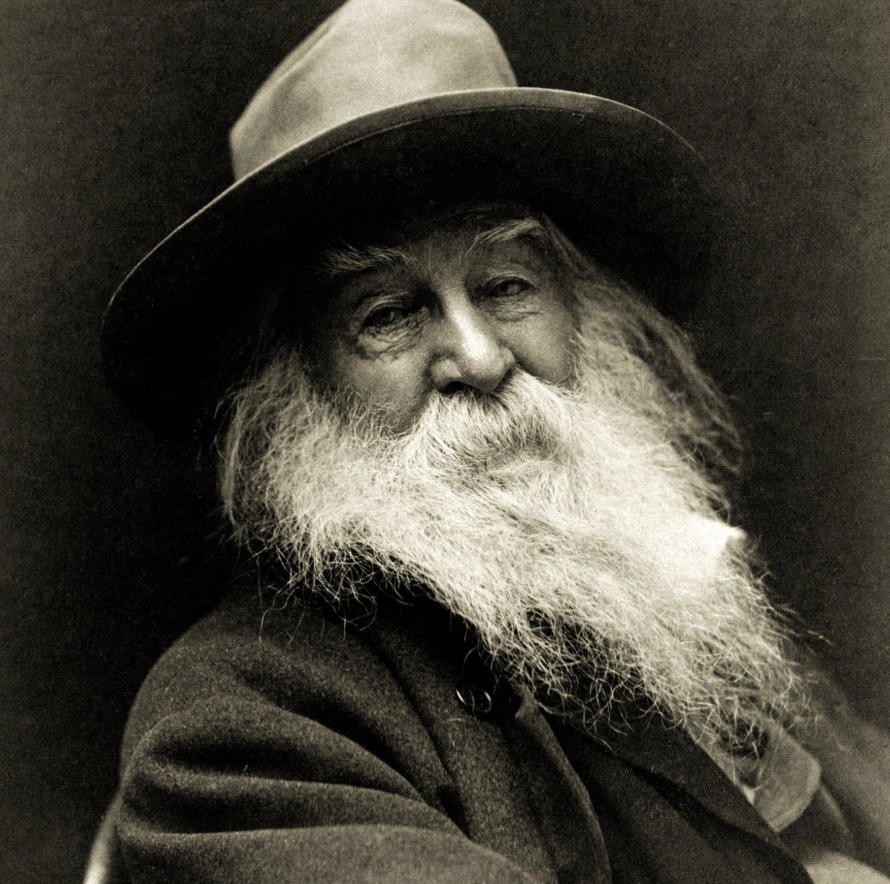 the literary works of walter whitman Here users will find the six american editions of leaves of grass published in whitman's lifetime as well as the so-called deathbed edition of 1891–92.