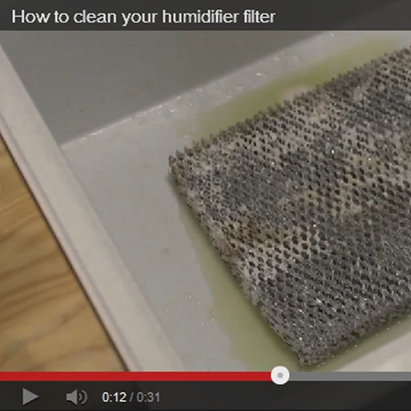 how to clean your humidifier filter for the home pinterest humidifier filters and household. Black Bedroom Furniture Sets. Home Design Ideas