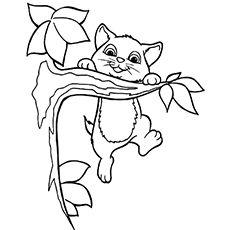 Top 15 Free Printable Kitten Coloring Pages Online Ausmalbilder Tiere Ausmalbilder Katzen Malvorlagen Zum Ausdrucken
