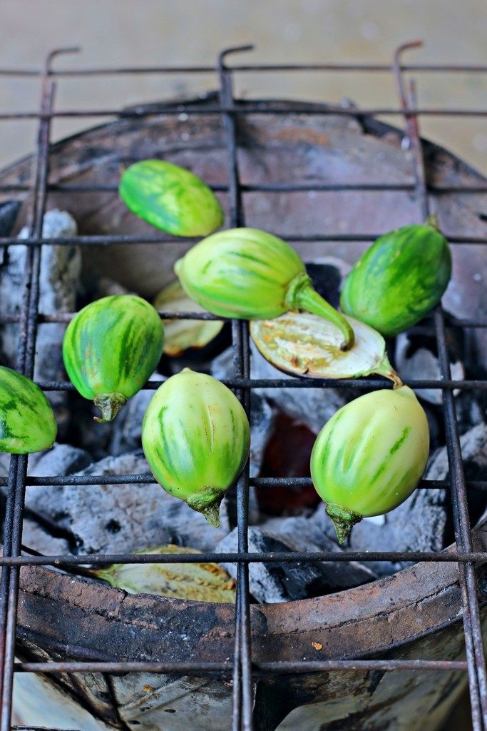 Char-grilled Garden Egg Fritters + 4 Years Blogging | Egg, Grilling ...