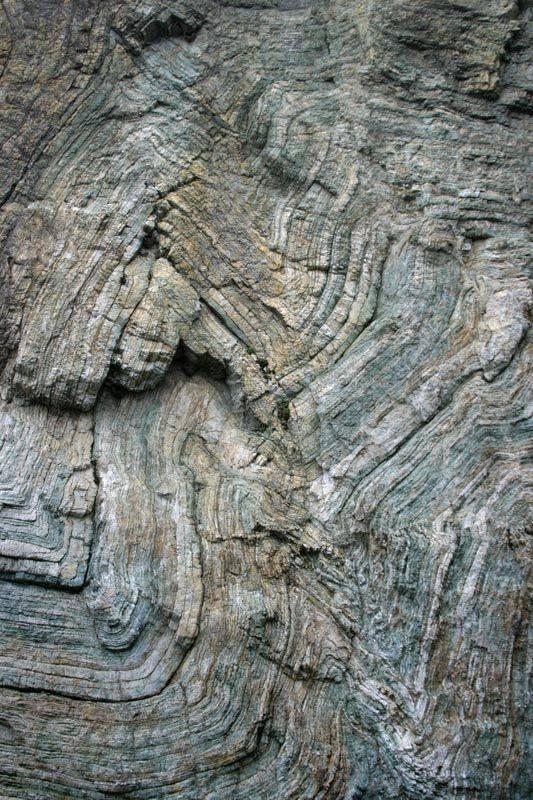 Chevron folds in ribbon chert, southern Oregon coast.
