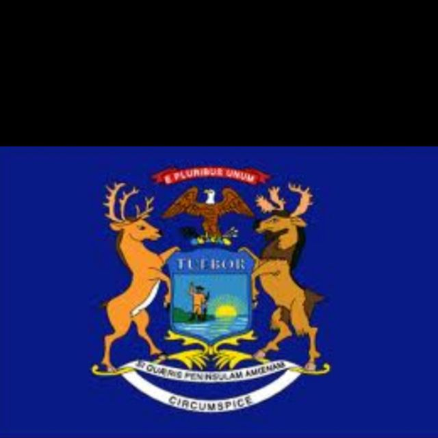 Pure Michigan Michigan State Flag For Saugatuck Michigan State Flag Michigan Flag Michigan Usa