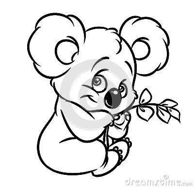 Koala Eucalyptus Leaves Coloring Page Image Animal Character