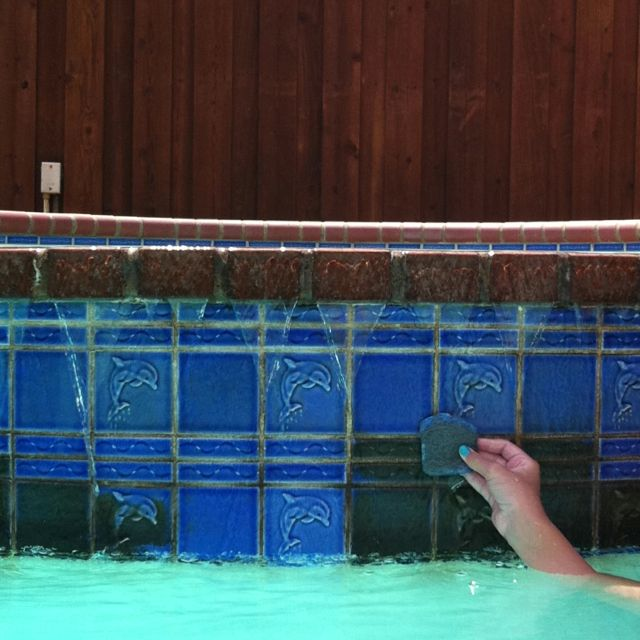 pool cleaning swimming pool tiles