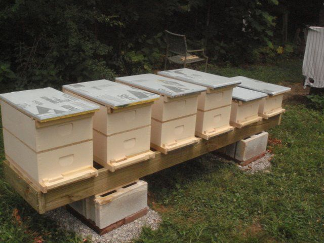 Hive Stand Designs : Beehive stand thread stability issues with frame
