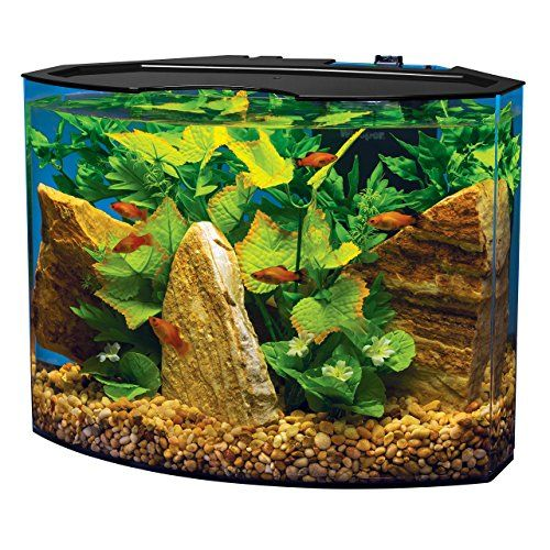 The Ultimate Guide To Modern Contemporary Fish Tanks With Big Style Betta Fish Tank Aquarium Kit Acrylic Aquarium