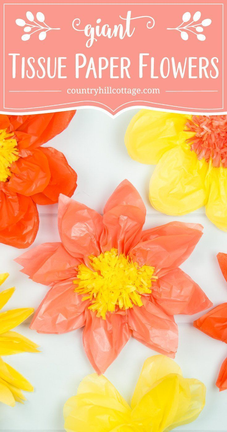 Giant Tissue Paper Flowers  Easy Paper Craft DIY #giantpaperflowers
