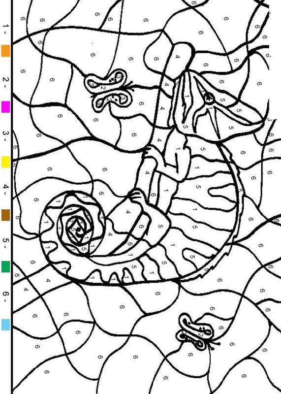 Reptile Color By Number Chameleon Coloring Pages Chameleon Color Coloring Books