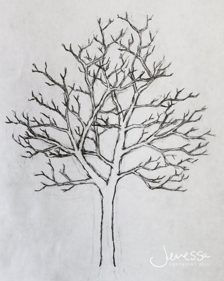 pictures of trees drawing | JMarieMi: How to draw a tree | Pen & ink ...