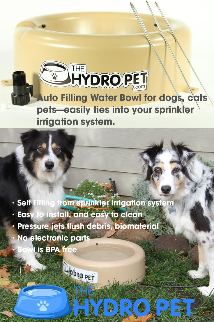 This Outdoor Dog Cat And All Pet Watering Bowl Is Self Filling From Your Automatic Sprinkler Irrigation System The Recycled Water From The Bowl As It Is Fill
