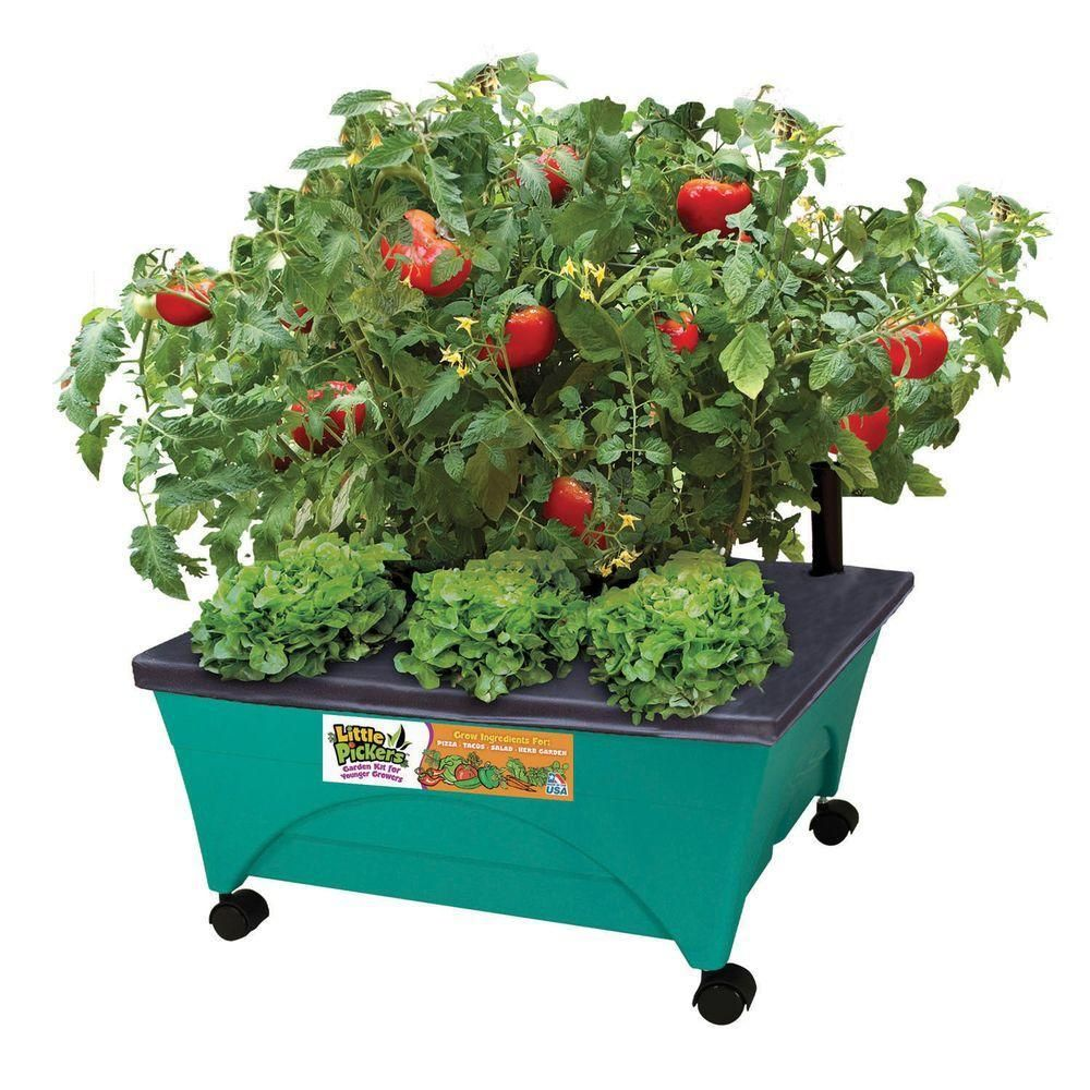 patio raised garden bed grow box