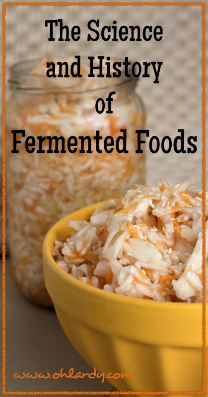The Science and History of Fermented Foods - Oh Lardy