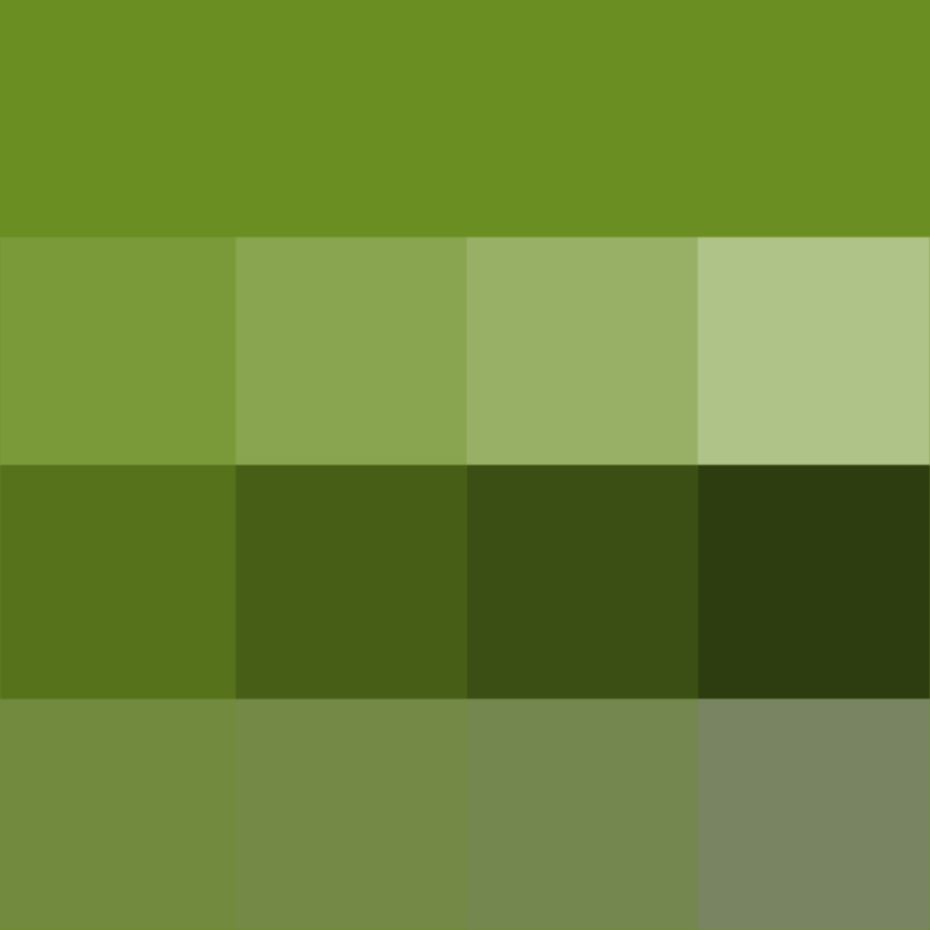 Olive Drab ( Hue ) ( pure color ) with Tints (hue + white), Shades ...