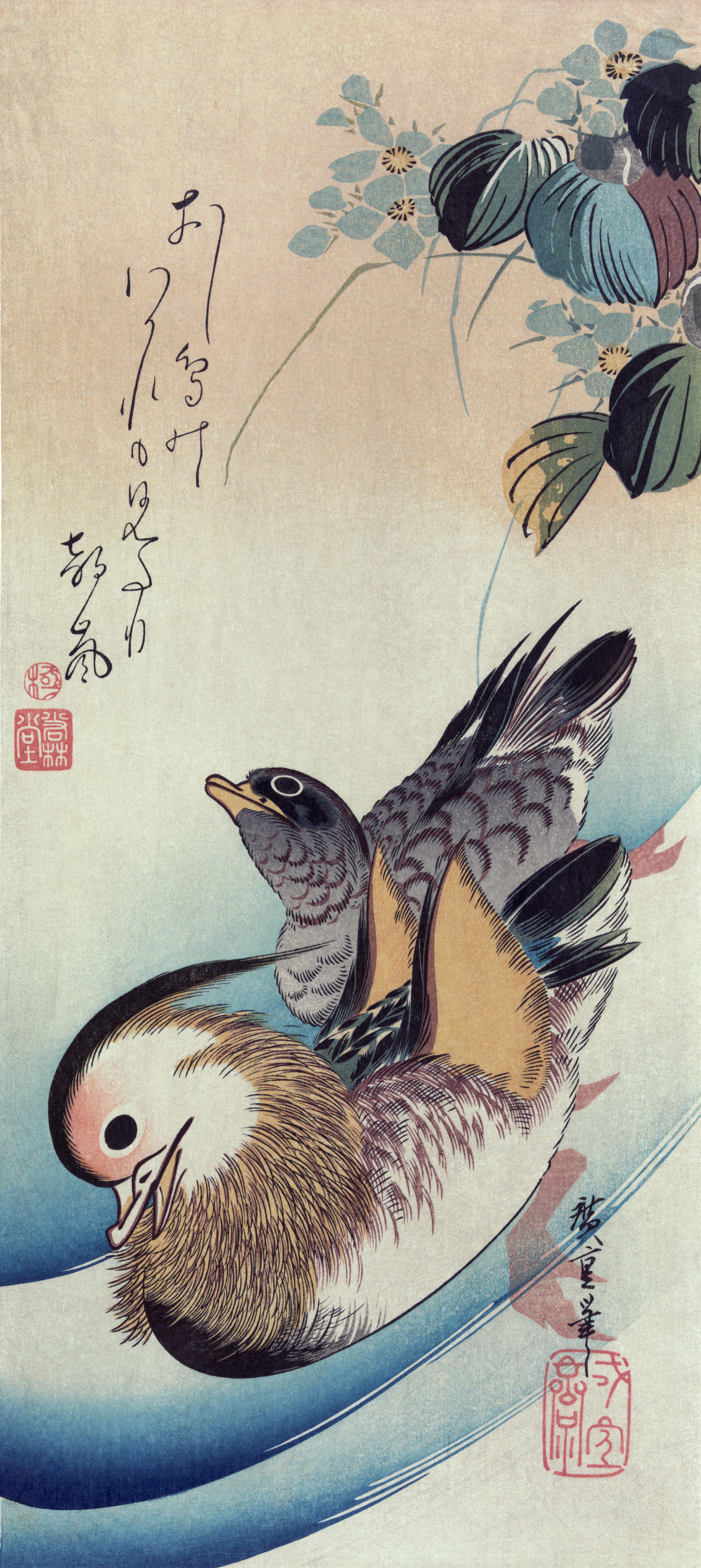 Mandarin_duck_woodcut3.jpg 3,886×8,688 pixels