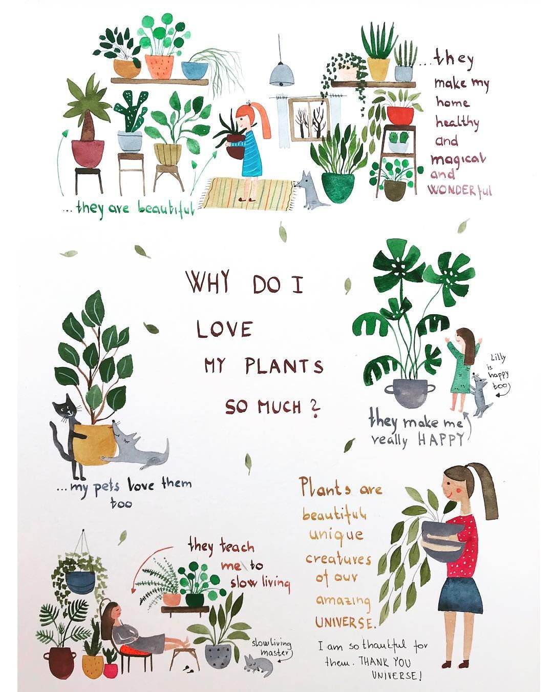 This Is Why I Love My Plants So Much Plantlover Plantlove Plantsmakepeoplehappy Plantsarefriends Plants Houseplantlove In 2020 Plant Lady Inside Plants Plants