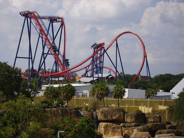 Sheikra Bush Gardens Tampa Fl Awesome Coaster Rode It When It First Opened Busch Gardens Bush Garden Theme Parks Rides