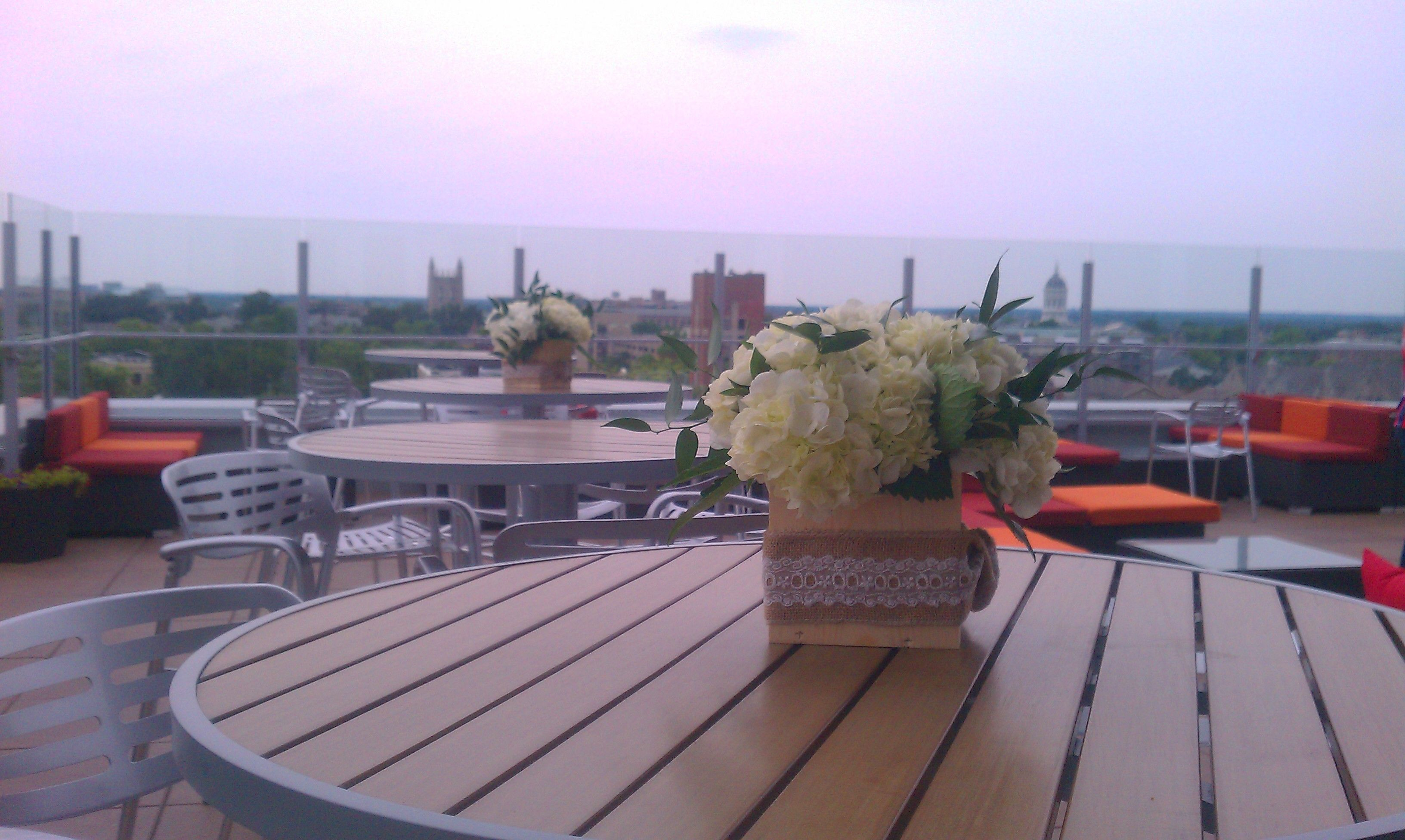 White Hydrangea's On The Rooftop At The Broadway Downtown